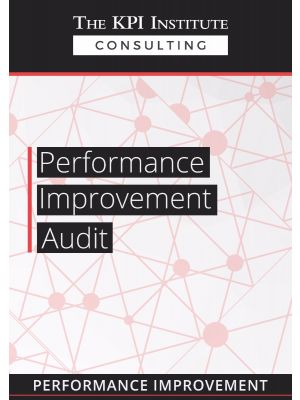 Performance Improvement Audit