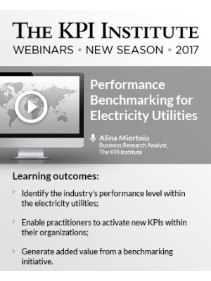 Performance Benchmarking for Electricity Utilities